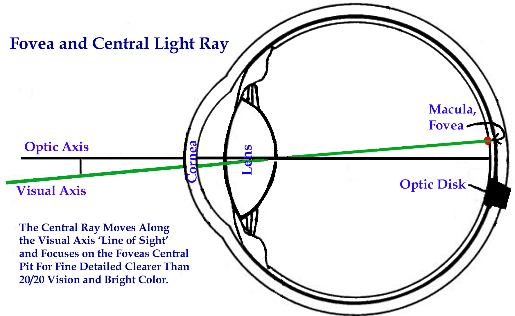 Visual Axis, Central Ray