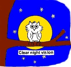 "Clear Night Vision. Mr Owl says; 'Who Sees Best in the Dark?""  The Eyes Fovea, Macula When There is a Source of Light."